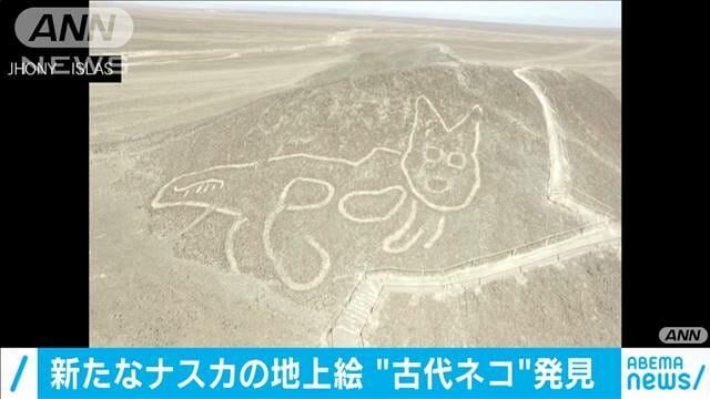 """【考古学】「ナスカの地上絵」新たに発見 丘に""""古代ネコ"""""""