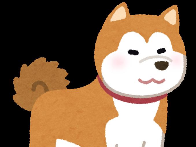 【当たり前】イヌは人間が話す単語の細かい違いを理解できないことが判明www